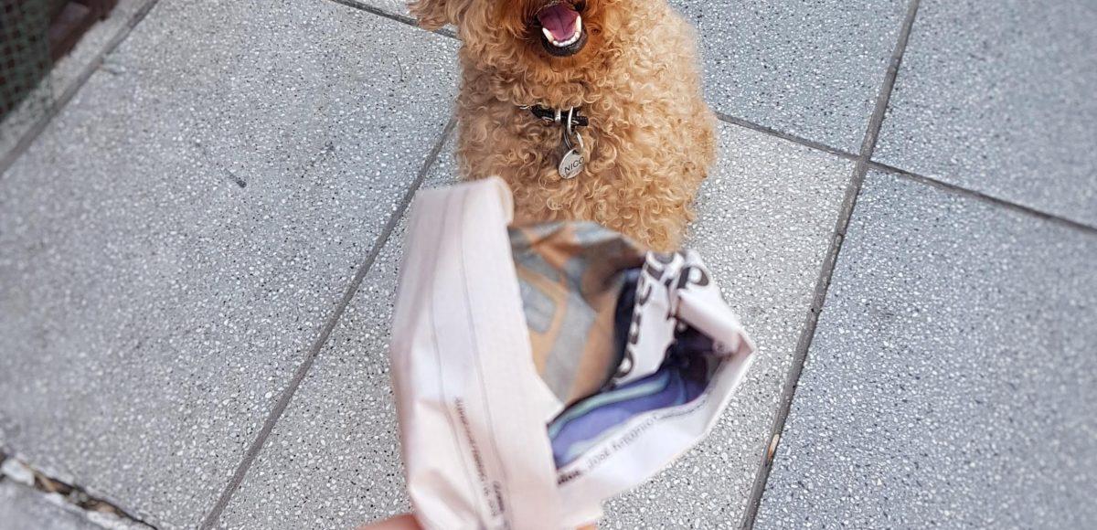Un paquetito de papel de diario para levantar la caca del perro